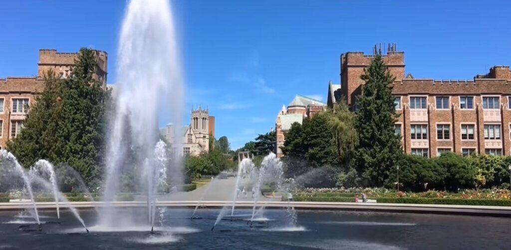 Washington University